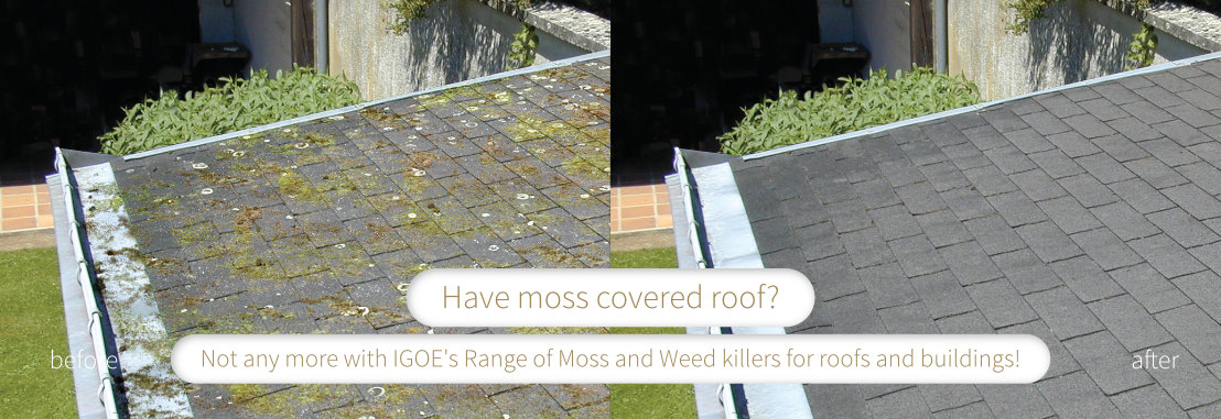 Moss On Your Roof? Sort It With ATM007 Moss, Lichen & Algae Remover